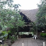 Photo of Meru Mbega Lodge