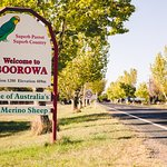 Arriving at Boorowa, 2586 NSW