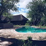 Kambaku Safari Lodge Foto
