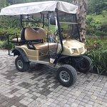Mega wheels on a golf buggy!