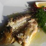 Photo of Palm Grove Restaurante Italiano