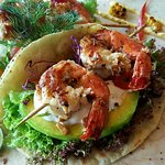 Grilled Tiger Prawn Taco