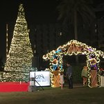 Photo de JA Palm Tree Court