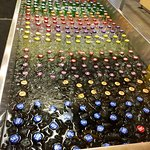 Rows of cold soft drinks