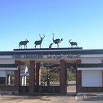 Parc Animalier de Kissir - El Aouana