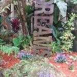 Parque del hotel con variedad de flora y esculturas recicladas