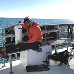 Beautiful Florida Keys day diving wrecks with Horizon Divers.