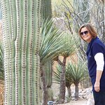 You'll love the cactus gardens! You can easily spend hours just walking the grounds and taking p