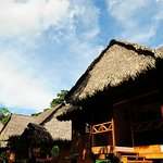 Photo of Tambopata Ecolodge