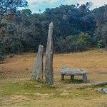 Monoliths outside the grove