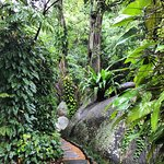 Photo de Tamarind Springs Forest Spa