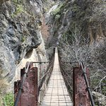 One of the several hanging bridges!