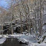 Photo of Oirase Stream