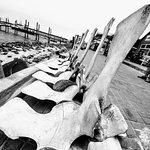The Raft Foto