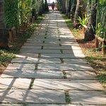 Path to hotel beach bar