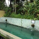 Billede af Bali T House