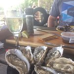 Oysters R Us Foto