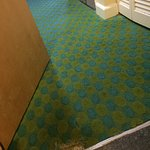 Frayed carpet in room for $500 per night