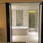 Tub and Shower Room...