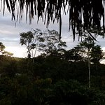 Suchipakari Amazon Rainforest Ecolodge Foto