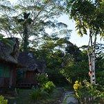 Suchipakari Amazon Rainforest Ecolodge Image