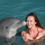 Photo de Dolphin Island