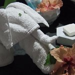 Loved the little washcloth elephant. Everything was beautifully done.