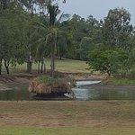 Rockhampton Golf Club