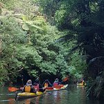 Kayaking on the river (glow worms came later). Sharon and team take photos of the group for you!