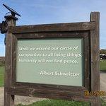 Foto de Farm Sanctuary