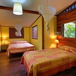 Foto de Jacaranda Hotel and Jungle Garden