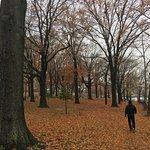 Foto de Astoria Park