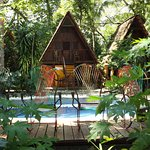 Foto de The Howler Monkey Hotel