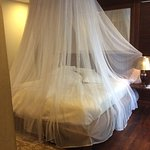 Mosquito netting over king bed.