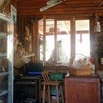 IMG_20170107_160814342_large.jpg