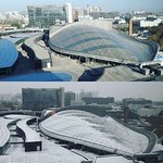 Before and after snow. Photo taken on 19 Nov (top) & 21 Nov (bottom)