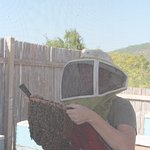 Beekeeper demonstration.