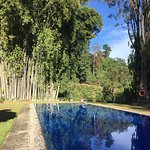 Ceylon Tea Trails - Relais & Chateaux Photo