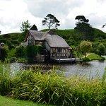 Lovely scenery at Hobbiton