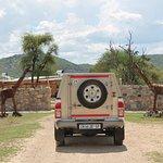 Gabus Game Ranch Foto