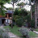 Photo of Luces del Bosque