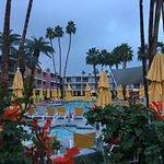 The Saguaro Palm Springs Bild