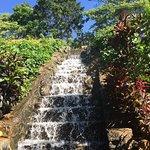 Photo de Viharagala Estate Bungalow