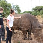 Foto di Elandela Private Game Reserve