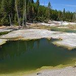 Foto de Norris Geyser Basin