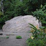 Foto de Comunidad Shiripuno
