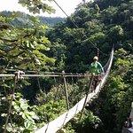 Toro Verde Nature Adventure Park Picture