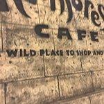 Foto Rainforest Cafe