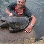 Samoan lady bringing a turtle to us