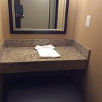 Holiday Inn Express & Suites Downtown Buffalo Foto